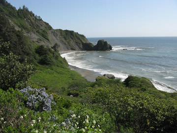 Endert's Beach, Crescent City, California