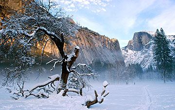 California Winter Vacation at Yosemite National Park