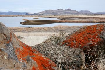 Klamath Basin Wildlife Refuge
