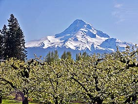 Mount Hood Scenic Byway - spring time