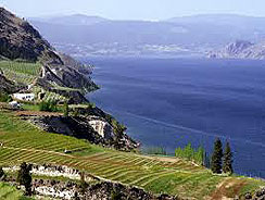 Okanagan Lake Wineries - Salmon Fishermen