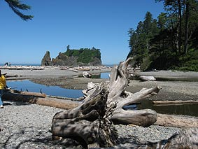 Rialto Beach at Olympic National Park