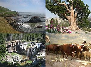 Oregon Nature Trails collage